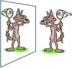 Nello spazio virtuale al di là di uno specchio si vedono le immagini ...